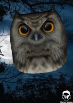 owlmask.png